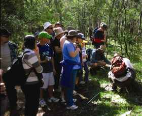 Warrumbungle National Park Discovery Program - Accommodation Coffs Harbour