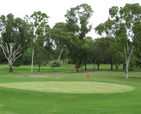 Moree Golf Club - Accommodation Coffs Harbour