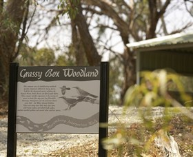 Kindra Forest - Accommodation Coffs Harbour