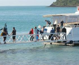 Scuba Diving on Keswick Island - Accommodation Coffs Harbour
