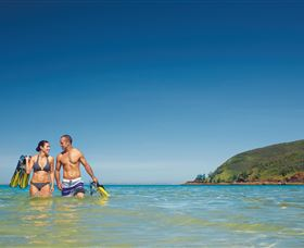 Snorkelling on Keswick Island - Accommodation Coffs Harbour