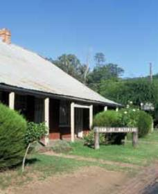 Lion of Waterloo Tavern - Accommodation Coffs Harbour