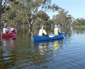 Doodle Cooma Swamp - Accommodation Coffs Harbour