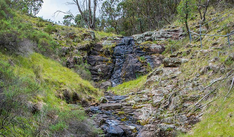 Hopetoun Falls walking track - Accommodation Coffs Harbour