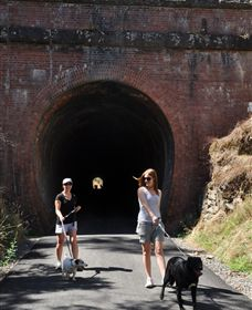 Cheviot Tunnel - Accommodation Coffs Harbour