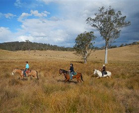 Chapman Valley Horse Riding - Accommodation Coffs Harbour