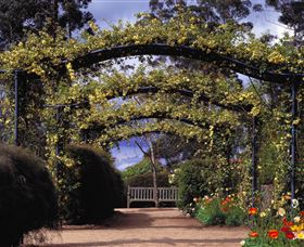 Blue Mountains Botanic Garden - Accommodation Coffs Harbour