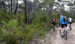 McMahon's Point ride - Wentworth Falls - Accommodation Coffs Harbour