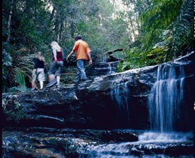 South Lawson Waterfall Circuit - Accommodation Coffs Harbour