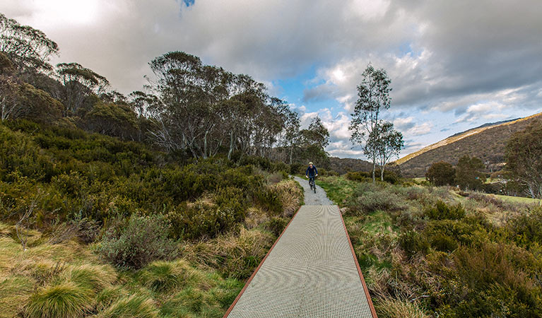 Thredbo Valley track - Accommodation Coffs Harbour