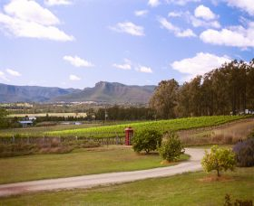 Catherine Vale Wines - Accommodation Coffs Harbour