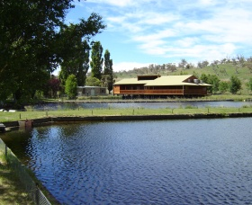 Gaden Trout Hatchery - Accommodation Coffs Harbour
