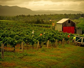 Around Hermitage Wine and Food Trail Hunter Valley - Accommodation Coffs Harbour