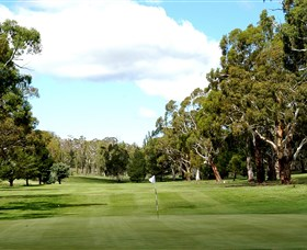 Cooma Golf Club - Accommodation Coffs Harbour