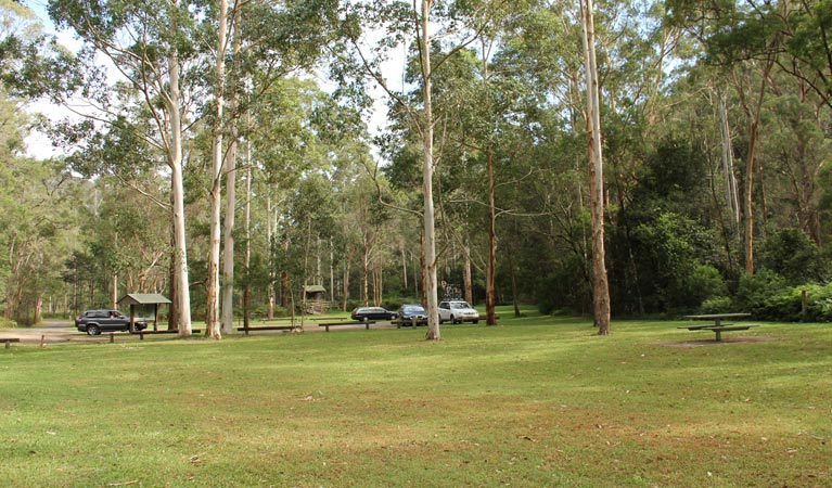 Mill Creek picnic area - Accommodation Coffs Harbour