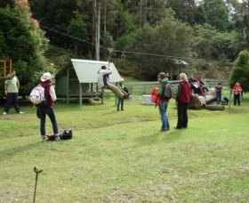 Forest of Tranquillity - Australian Rainforest Sanctuary - Accommodation Coffs Harbour