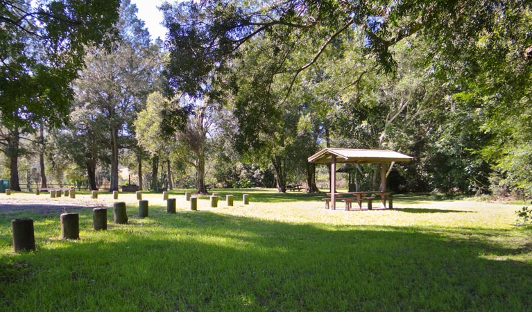 Moore Park picnic area - Accommodation Coffs Harbour