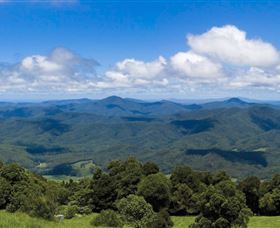 Griffith Lookout - Accommodation Coffs Harbour