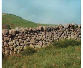 Historic Dry Stone Walls - Accommodation Coffs Harbour