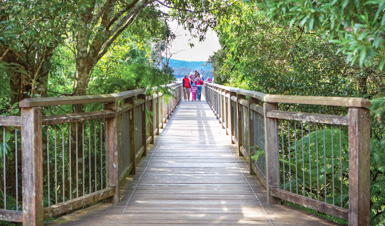 Skywalk lookout - Accommodation Coffs Harbour