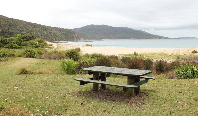 Depot Beach picnic area