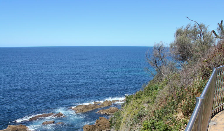 Moruya Heads lookout - Accommodation Coffs Harbour