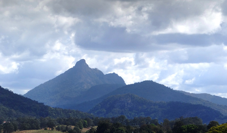 Wollumbin National Park - Accommodation Coffs Harbour