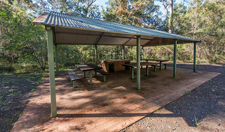 Brimbin picnic area - Accommodation Coffs Harbour