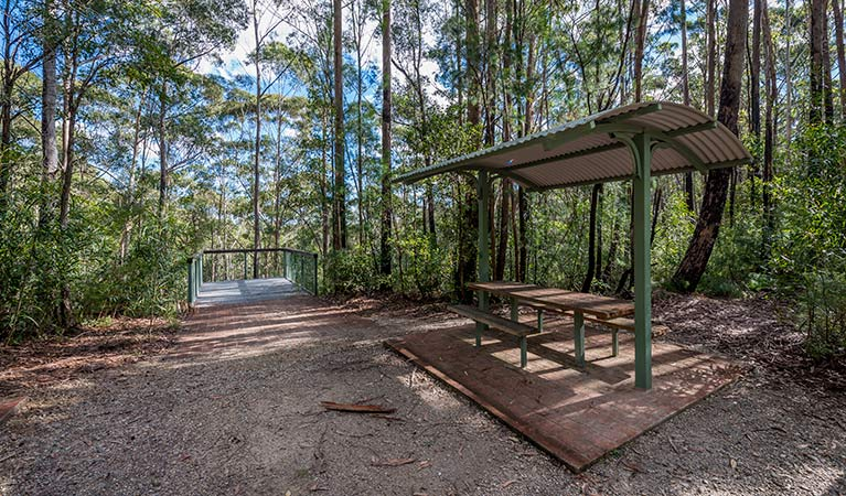 Big Nellie lookout and picnic area - Accommodation Coffs Harbour