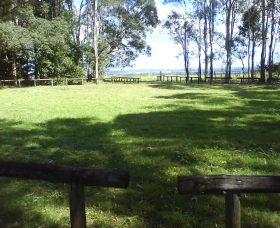 Aboriginal Bora Ring - Accommodation Coffs Harbour