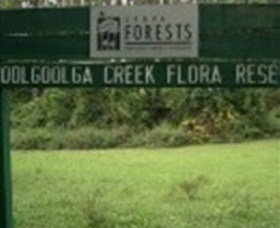 Woolgoolga Creek Flora Reserve - Accommodation Coffs Harbour