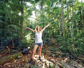 Victoria Park Nature Reserve - Accommodation Coffs Harbour