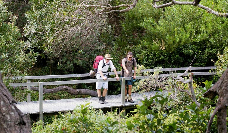 Wilsons Headland walking track - Accommodation Coffs Harbour