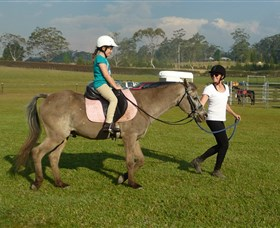 Port Macquarie Horse Riding Centre - Accommodation Coffs Harbour