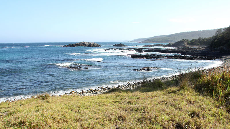 Mimosa Rocks National Park - Accommodation Coffs Harbour