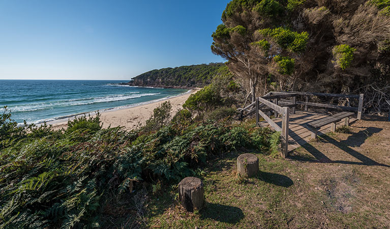 Terrace Beach and Lennards Island - Accommodation Coffs Harbour