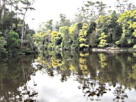 Arthur River - Accommodation Coffs Harbour
