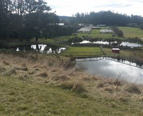 Guide Falls Farm - Accommodation Coffs Harbour