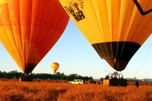 Hot Air Balloon Scenic Rim - Accommodation Coffs Harbour