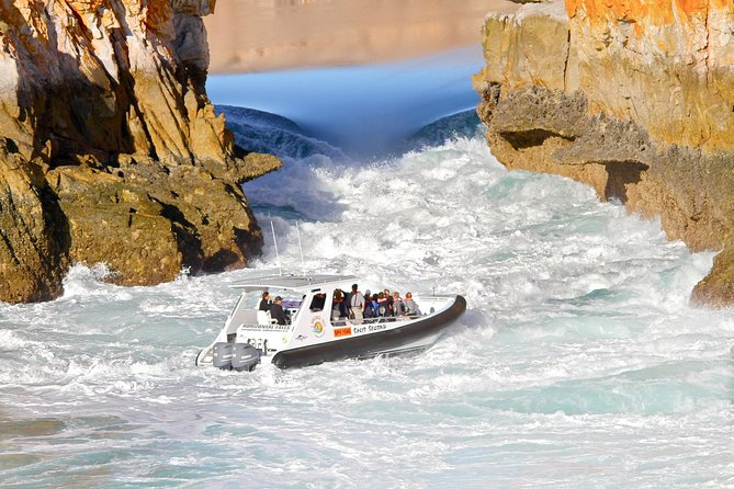 Horizontal Falls Half-Day Tour from Broome - Accommodation Coffs Harbour