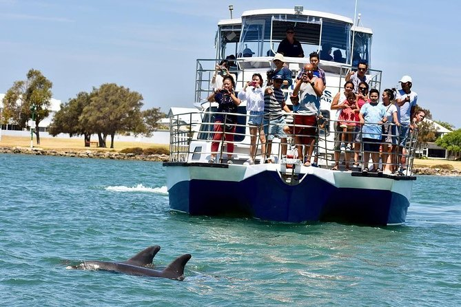 Mandurah Dolphin and Scenic Canal Cruise - Accommodation Coffs Harbour