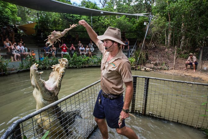 Hartley's Crocodile Adventures Day Trip from Cairns - Accommodation Coffs Harbour