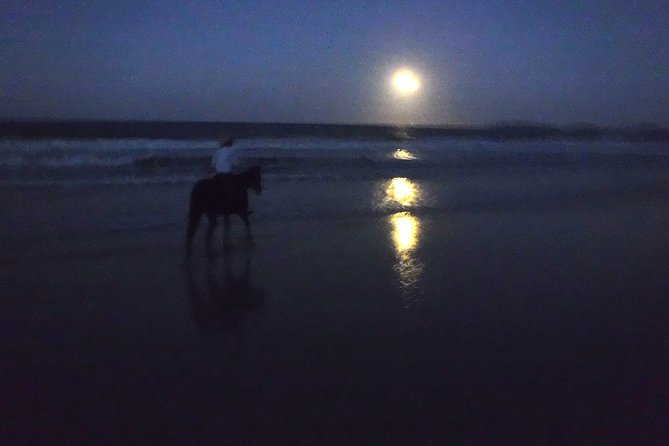 Full Moon Horse Ride at Rainbow Beach - Accommodation Coffs Harbour