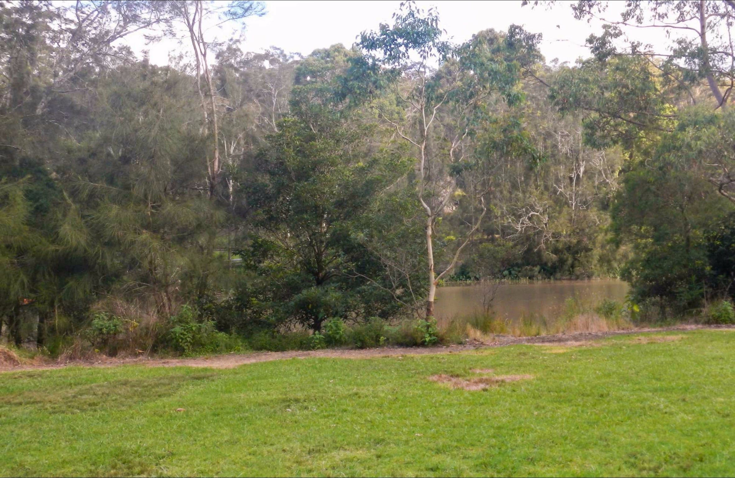 Bakers Flat picnic area - Accommodation Coffs Harbour