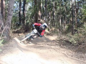 Jolly Nose Mountain Bike Park - Accommodation Coffs Harbour