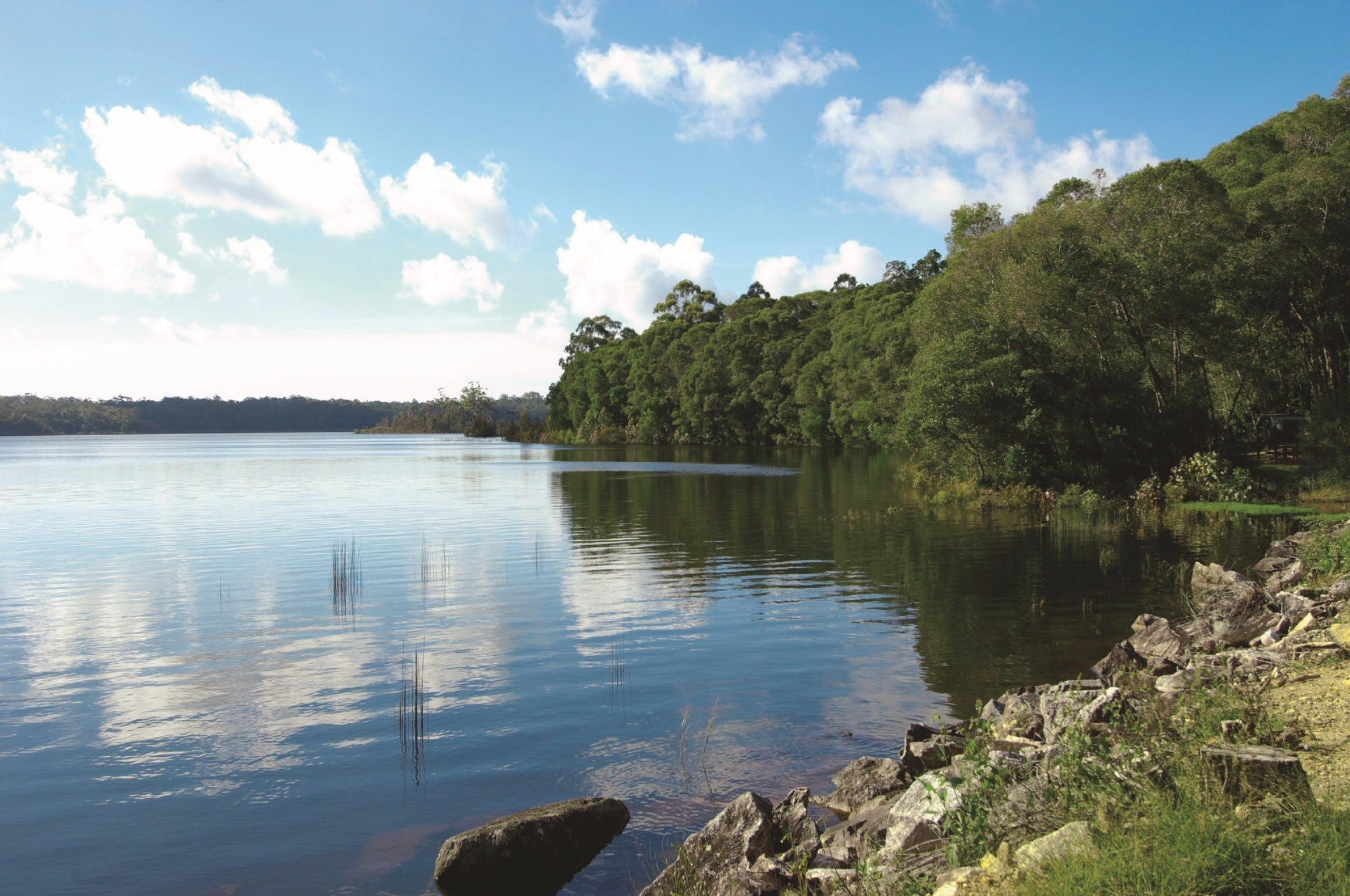 Lake Paluma - Accommodation Coffs Harbour