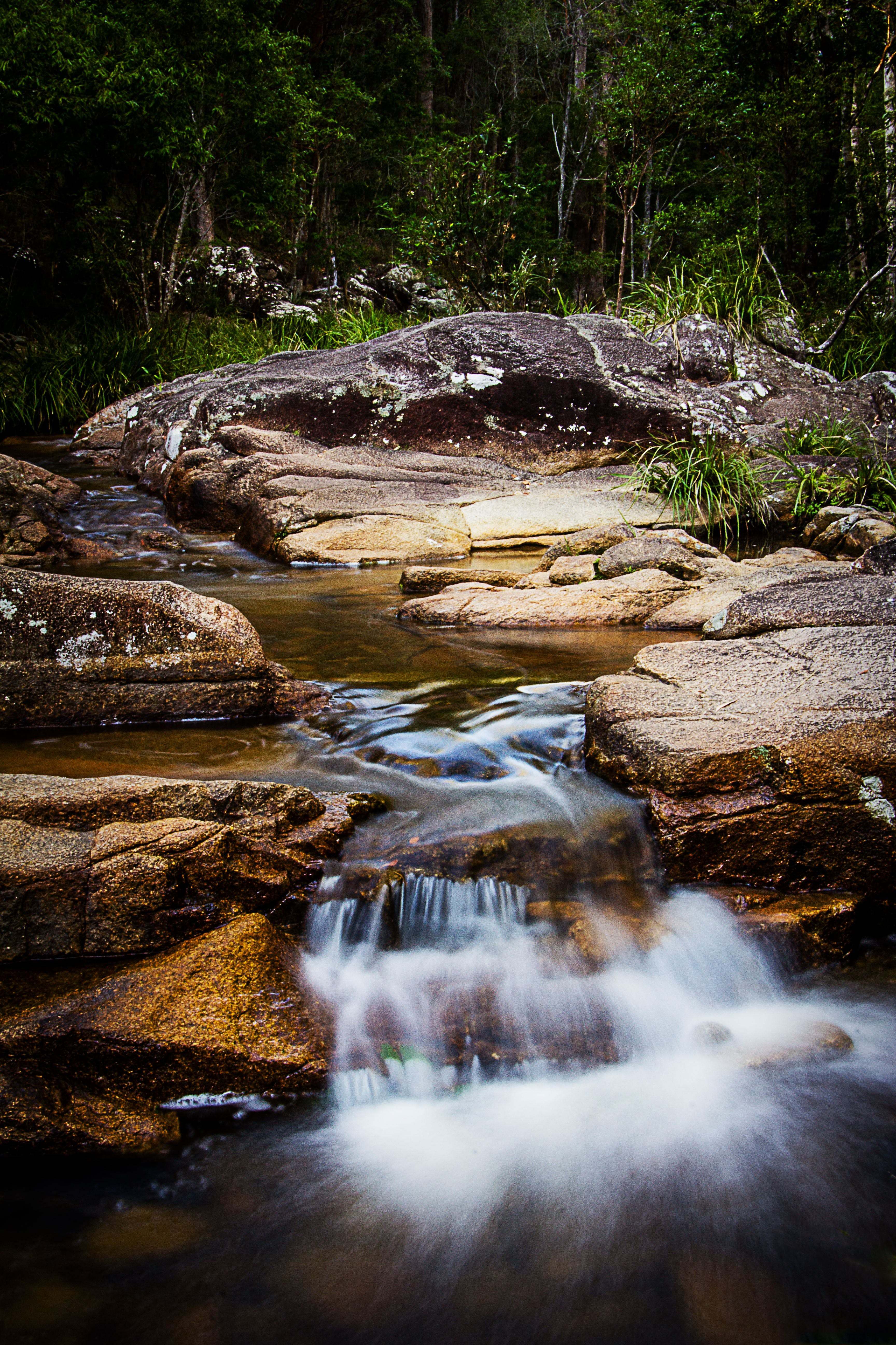 Mothar Mountain Rockpools - Accommodation Coffs Harbour