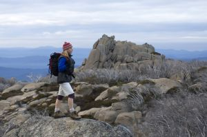 Mount Buffalo National Park - Accommodation Coffs Harbour