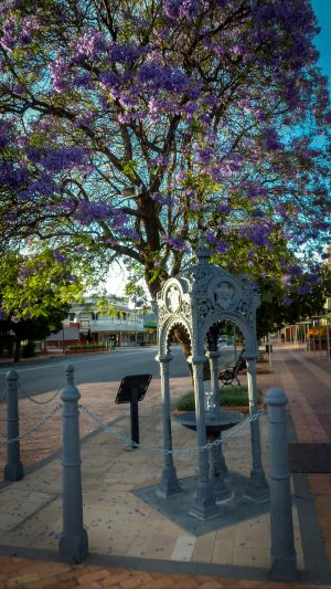 Witcombe Fountain - Accommodation Coffs Harbour