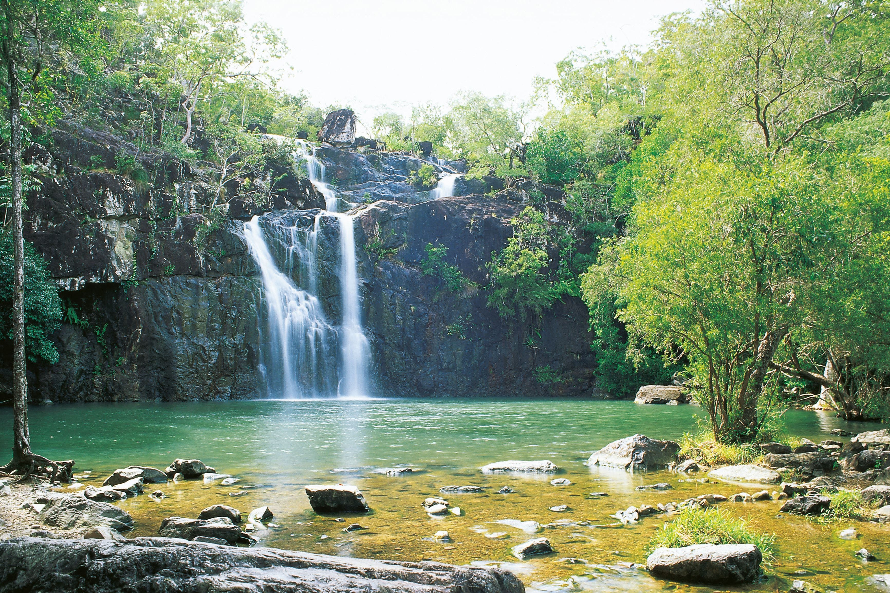 Airlie Beach to Cedar Creek Falls - Accommodation Coffs Harbour